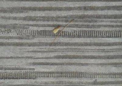 Pavimento Impreso Molde dentado